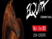 Novembre 2013: Salon Equita Lyon